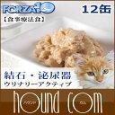 猫 FORZA10|ウリナリー(泌尿器ケア) アクティウェット 100g×12缶セット キャットフー