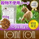 【初回送料無料】グレインフリー ワイソン オプチマルニューチャー 450g スターターパック 子猫用 酵素 乳酸菌