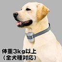 【送料無料】【犬のしつけに】ジェットケア エデュケーション プロ 体重3kg以上に最適5P13oct13_b【RCP】