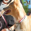 ハーフチョーク 中型犬 ASHU トリコロール ハーフチョー...