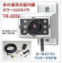 (今なら送料無料!!)赤外線投光器+音声マイク内臓カラーCCDカメラ(TR-203C)