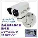 (今なら送料無料!!)赤外線投光器内臓(屋外用)防水型カラーCCDカメラ(TR-853WCP20)