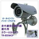 (今なら送料無料!!)赤外線投光器内臓(屋外用)防水型カラーCCDカメラ(TR-855WCP)