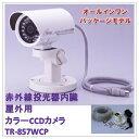 (今なら送料無料!!)赤外線投光器内臓(屋外用)防水型カラーCCDカメラ(TR-857WCP)