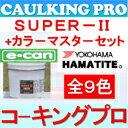【全9色】ハマタイト 変成シリコーン系 スーパーII e-can(把っ手は別売り)4リットルセット×2 / ケース カラーマスター155g×2袋セット