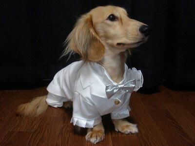 【完全オーダーメイド】犬用タキシード #ランキング入賞 #結婚式 #写真撮り #ウェディング #パーティ #わんこ #犬服 ランキング入賞!サイズオーダー!お作りします。可愛いタキシード。結婚式のウエルカムドッグ、記念撮影にピッタリ
