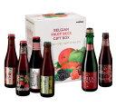 【 送料無料!】ベルギー フルーツビール セット (6本入り)