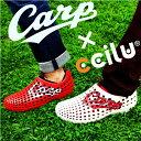 ccilu am2-carp 2017モデル 広島東洋カープ 公認 メンズ・レディース 22.0cm〜28.5cm 2色 ・・