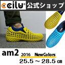 Am2_mens2016