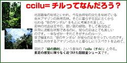 ��ccilu(����)��ۡ�2015ǯ�ղơۡڥ��롦���塼����˥�����饹�ۡڥ�ۥ��롦����ѥ�ccilu-UnionDallas�����ѥ��ˡ����������ץ����ȥɥ��ڳڥ���_������