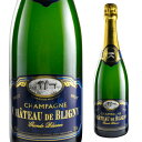 е╖еуе╚б╝ е╔ е╓еъе╦е░ещеєе╔ еье╝еыеЇ е╖еуеєе╤б╝е╦ехChateau De Bligny Grande Reserve Champagne е╒ещеєе╣ е╖еуеєе╤еє ╟Є ┐╔╕¤ ╦в е╣е╤б╝епеъеєе░еяедеє Sparkling Wine