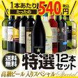 高級ビール入りスペシャル 特選ワイン12本セット12弾【送料無料】[ワインセット]