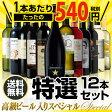 高級ビール入りスペシャル 特選ワイン12本セット13弾【送料無料】[ワインセット]