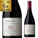 1本あたり1,467円(税別)!コノスル シングルヴィンヤード シラー 750ml×6本入 チリ 赤ワイン 辛口 シングルビンヤード 長S