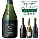 【送料無料】高級シャンパンを探せ!第43弾!! トゥルベ ト...