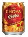 チョーヤウメッシュ ソーダ プレーン250mL缶1ケース24本