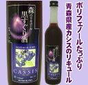 桃川 森のリキュール 黒すぐり酒 6° 500mL