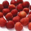 冷凍フルーツホールクール・ソヴァージュフレーズ(ストロベリー)1kg[冷凍]【2〜3営業日以内に出荷】