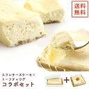 【送料無料】北海道産クリームチーズの半熟スフレとトーフチャウデのセット【冷凍】