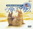 ちっちゃいものクラブ ウサギとリス(DVD)
