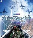 コロムビア NHK-VIDEO 天空のアクロバット?ブルーインパルスの男たち?COXB-1029