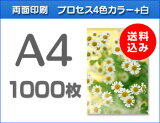 A4クリアファイル印刷1000枚(単価44)