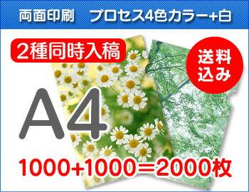 A4クリアファイル印刷1000枚+1000枚=2000枚