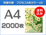 A4クリアファイル印刷2000枚(単価31.25)