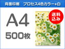 A4クリアファイル印刷500枚(単価65円)