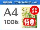 【特急便】A4クリアファイル100枚(単価280円)