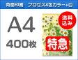 【特急便】A4クリアファイル400枚(単価101.25円)