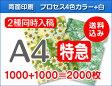 【特急便】A4クリアファイル1000枚+1000枚=2000枚