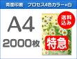 【特急便】A4クリアファイル2000枚(単価40円)