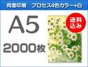 A5クリアファイル印刷2000枚(単価30.75円)