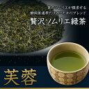 お茶 緑茶 深蒸し煎茶【芙蓉】平袋入 100g 創業100余年 老舗の茶師 ブレンド緑茶【話題の