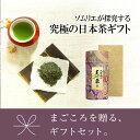 お茶 緑茶 ソムリエブレンド煎茶ギフト 【芙蓉】200g×1缶 【楽ギフ_包装】【楽ギフ_のし宛