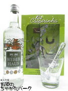 【あす楽】【ギフト】 ウェーバーハウス シルバー カシャーサ 特製グラス ペストル付き 正規品 38度 700ml