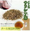 サラシア茶ティーパック90g【3gx30p】【メール便送料無料】