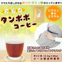 たんぽぽ茶 ポット用 便利な三角ティーバッグ 3.5gx3