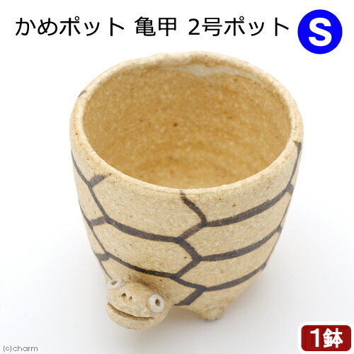 かめポット 亀甲 S 2号ポット 信楽焼 関東当日便