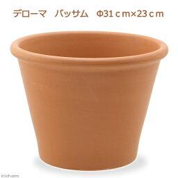 デローマ バッサム Φ31cm×23cm 多肉植物 花 サボテン ハーブ 寄せ植え テラコッタ 鉢 お一人様5点限り 関東当日便