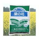 カネコ種苗 菜の花 500g 家庭菜園 グランドカバー 関東当日便