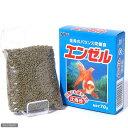 【金魚・らんちゅう用飼料】日本ペットフード エンゼル 70g