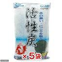 ニッソー 水の臭い・にごりを取る 活性炭 80g×6袋入(ネット入り) 5袋入り【HLS_DU】 関...