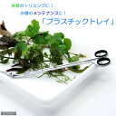 プラスチックトレイ (ホワイト) 関東当日便