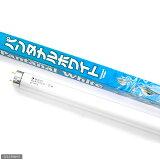 交換球 パンタナルホワイト 20W 水槽用照明・ライト 関東当日便