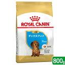 ロイヤルカナン ダックスフンド 子犬用 800g 3182550788113 ジップ付 関東当日便