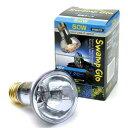 昼用集光型 スワンプグロー 防滴ランプ 50W(青)2個 爬虫類 保温球 関東当日便