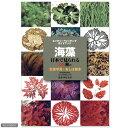 特徴がわかりやすい!生態写真とおしば標本を使って解説!ネイチャーウォッチングガイドブック 海藻 関東当日便
