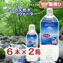 箱売り ペットの天然水 Vウォーター 2L ×12本 犬 ペットウォーター ドリンク 関東当日便